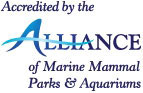Accredited by alliance of marine mammal parks and aquariums