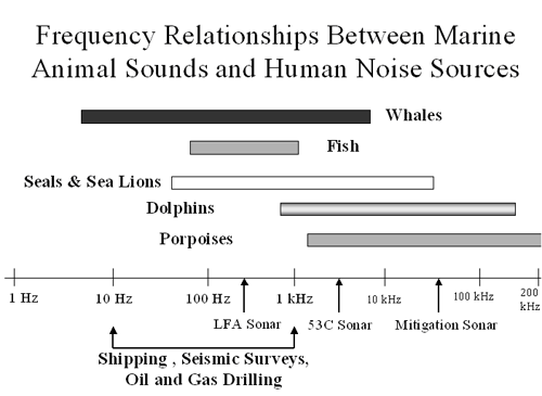 Hearing frequency between mammals
