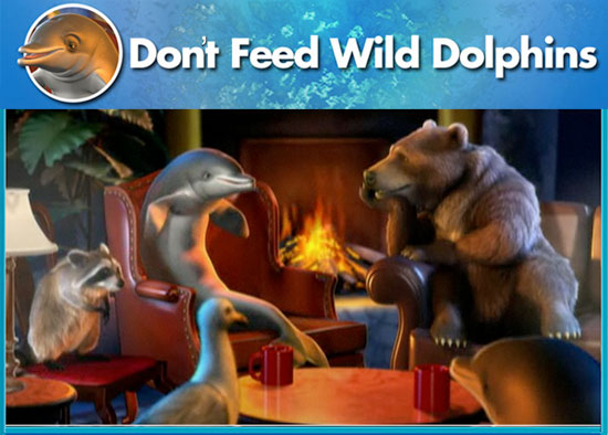 Don't Feed Wild Dolphins Public Service Announcement