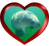 Slow down for manatees.