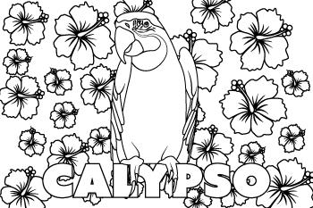 Drawing of Calypso