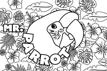 Draw Mr Parrot