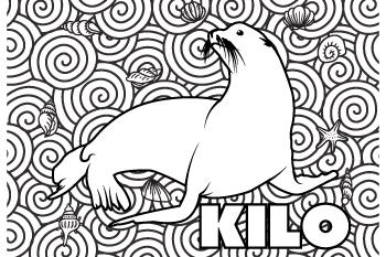 Kilo drawing