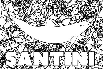 Drawing of Santini
