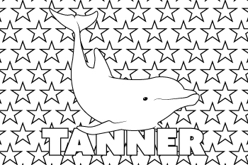Tanner drawing