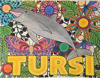 Completed page of Tursi