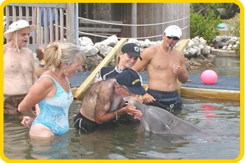These guests enjoy their in-water program with the dolphins.