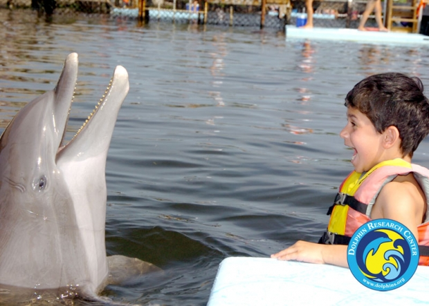 A child in a life vest in front a dolphin
