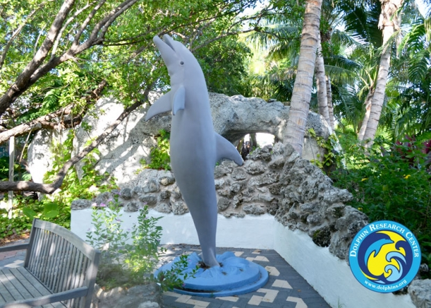 A statue of a dolphin in a rock garden.