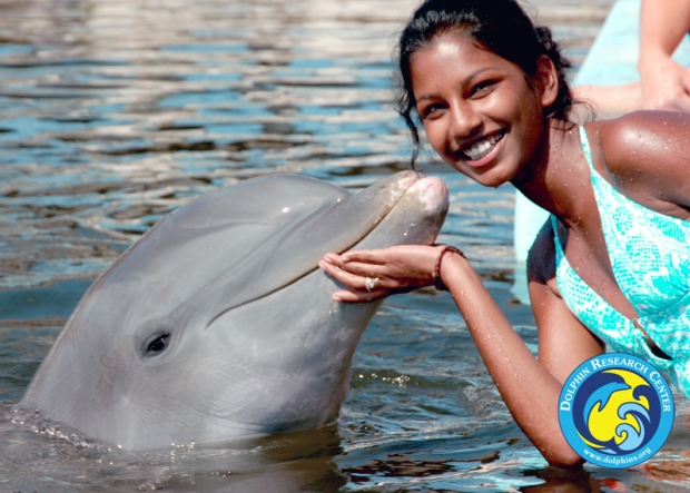 A guest getting kissed by a dolphin