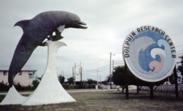 The first sign and big statue identifying us as Dolphin Research Cent