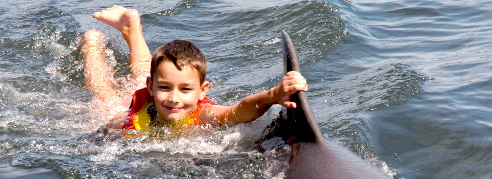 Have a blast learning and swimming with the dolphins.