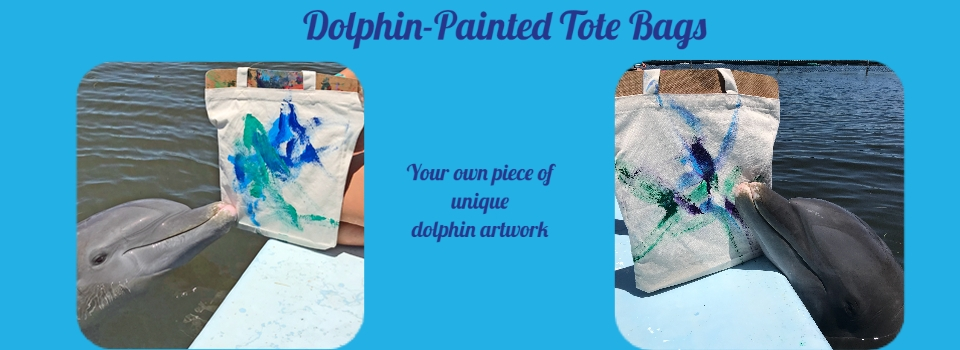 Get your own unique piece of dolphin artwork on a reusable canvas tot