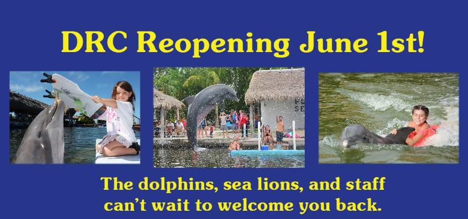 DRC will reopen to the public on June 1st. See you then!