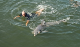 Further exploring dolphin's ability to imitate while blindfolded