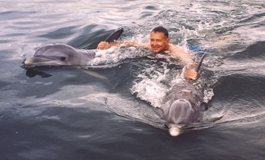 An early Dolphin Encounter structured swim.