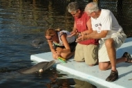Guests with a trainer on the dock in front of a dolphin (Program Image)