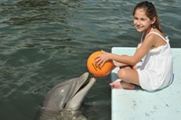 Young guest playing ball with a dolphin