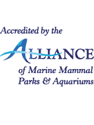 Alliance of Marine Mammal Parks & Aquariums logo