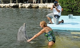 A photographer taking pictures of a guest wading with a dolphin